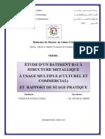 17089604.pdf