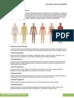 07 Anatomia e Fisiologia Humana
