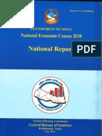 NATIONAL ECONOMIC CENSUS  REPORT 1 FINAL.pdf