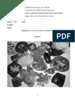 Guía N° 1_7495c12777e5dee01c35cd922bff2c76.pdf