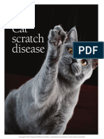2013. Cat scratch disease. Frontier