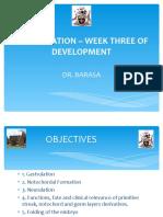 Week Three of Development-2