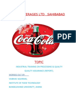 MOON BEVERAGES LTD.docx