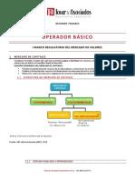 1. temario operador básico.pdf
