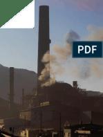 articles-52016_Capitulo_1 contaminacion atmosferica.pdf