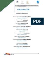 201503_BR_teme reflectie_V2_EIE.pdf