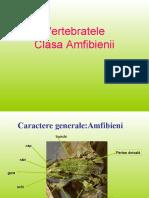 pestisiamfibieni