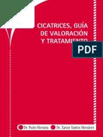 Cicatrices, guía de valoración y tratamiento (Pedro Herranz xavier).pdf