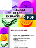 LEZIUNI  CELULARE   SI   EXTRACELULARE lectia2
