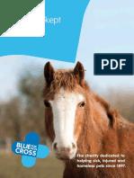 h5 field kept horse