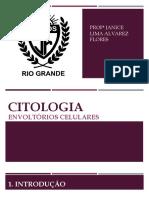 Aula Citologia - Envoltórios Celulares.pptx