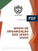 Níveis de Organização dos seres vivos e Características Gerais 1º ANO.pptx