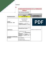 DESARROLLO DEL CURSO PLANEACION PEDAGOGICA DE LA FORMACION_VIERNES.xlsx