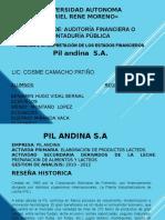 pil andina.pptx