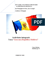 Proiect de activitate integrata.doc