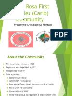 The Amerindian Village
