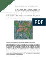 MODELO DE DESARROLLO SOSTENIBLE EN GUANE