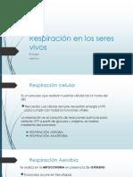 Respiración en los seres vivos septimo.pdf