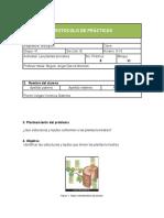 Tejidos presentes en plantas.docx