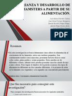 CRIANZA Y DESARROLLO DE HAMSTERS A PARTIR DE LA ALIMENTACIÓN.pptx