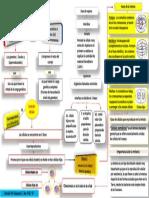 Mapa Conceptual Proceso de Division Celular