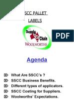 SSCCPresentation29.7.02