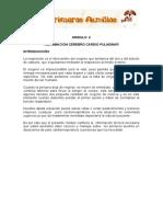 Módulo+4+...doc