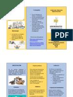 folleto de investigacio dianayc