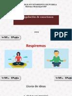 Regulación de emociones.pdf