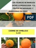 AVANCES EN TECNICAS DE MANEJOS PARA INCREMENTAR LA PRODUCCION Y EL TAMAÑO DE FRUTOS DE NARANJAS Y MANDARINAS EN CHILE