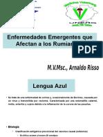 ENFERMEDADES EMERGENTES II.ppt