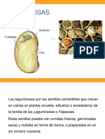 LEGUMINOSAS 2020.pdf