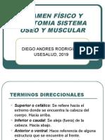 PRESENTACION EXAMEN FÍSICO Y ANATOMIA SISTEMA ÓSEO Y MUSCULAR USESALUD.pptx