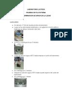 pruebas de plataforma(lab.lacteos)