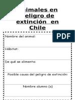 Animales en peligro de extinción  en Chile.docx