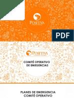 Comite Operativo de Emergencias Positiva Mininterior.pdf