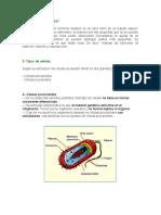 Exposicion de cedula.docx