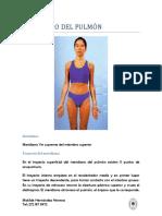 resumen puntos yin.pdf