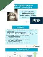2. Resultados SABE persona cuidadora familiar.pdf