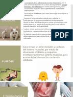 Enfermedades+y+cuidados+del+sistema+muscular (1).pptx