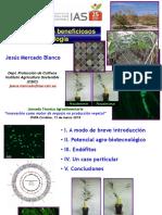 IAS-CSIC_-_Jesus_Mercado.pdf