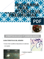 ANTIBIOGRAMA STREPTOCOCOS COMPLETO.pptx