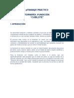Informe de Fundicion