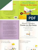 05 goose on the loose.pdf