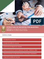 Sesion-02-Investigacion-por-encuestas-y-consultoria