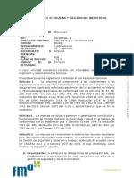 REGLAMENTO H Y S 01.docx