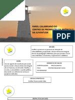 Apresentação - Farol Calabriano - CPIJ.pptx