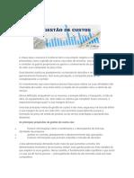 Resumo gestão de  custos.docx