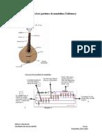 Guía para leer partitura de mandolina-1.docx