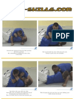 Bjj Pardoel Fig4